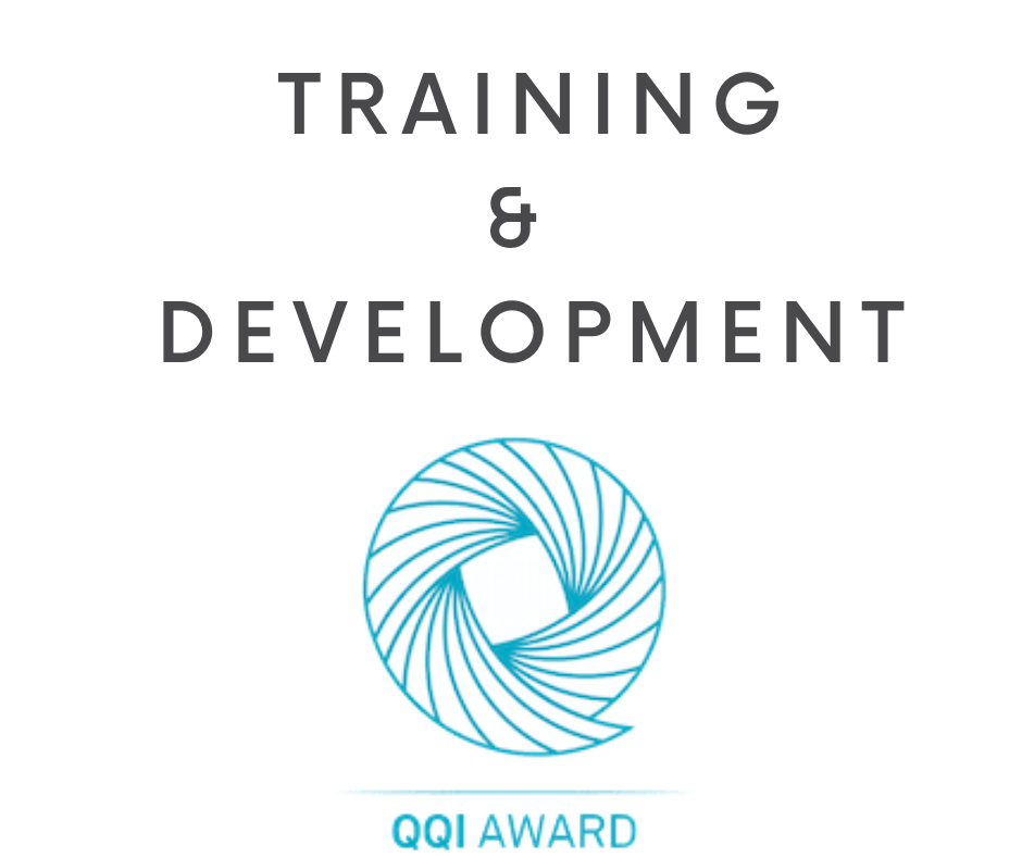 Train the Trainer QQI Level 6